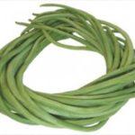 buy hybrid vegetable seeds online