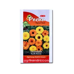 Calendula Pacific Beauty Mix - Pocha Seeds
