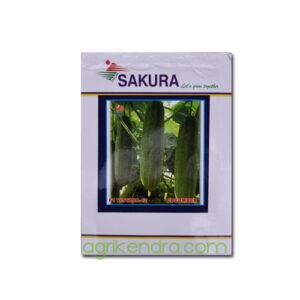 Cucumber F1 Vistara 42 - Sakura Seeds