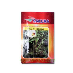 Okra F1 Damini - Sakura Seeds