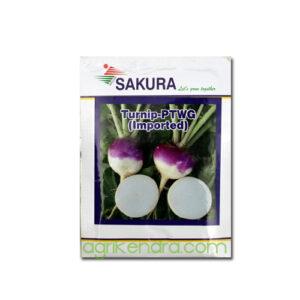 Turnip PTWG(Imported) - Sakura Seeds