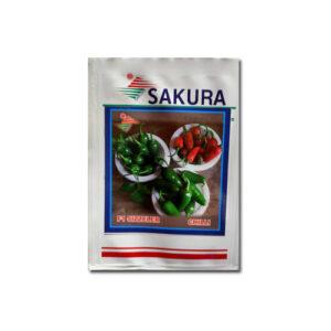 Bullet Pepper / Chili-F1 Sizzler - Sakura Seeds