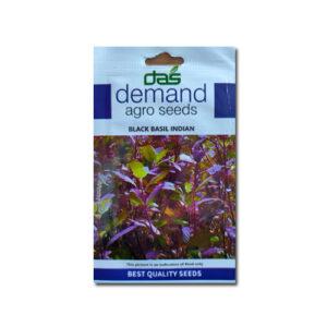 Basil Purple Indian - Demand Agro Seeds