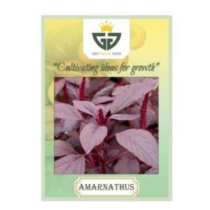 Amaranthus Red (OP) - Gro Golden Seeds