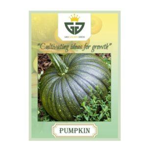 Pumpkin (OP) - Gro Golden Seeds