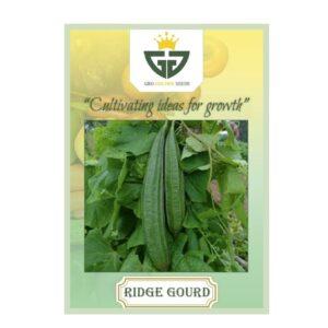 Ridge Gourd (OP) - Gro Golden Seeds