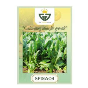 Spinach / Palak (OP)- Gro Golden Seeds