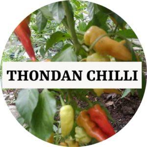 Thondan Chilli (OP) - Kerala Local