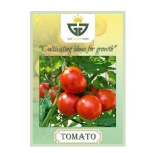 Tomato (OP) - Gro Golden Seeds