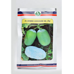 F1 Hybrid Ash gourd No. 700 - Sungro Seeds